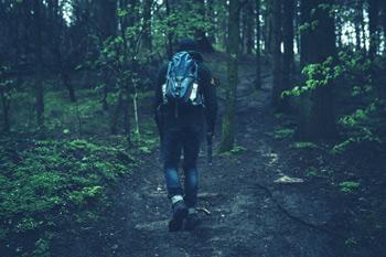 Randonneur dans la forêt, sport outdoor